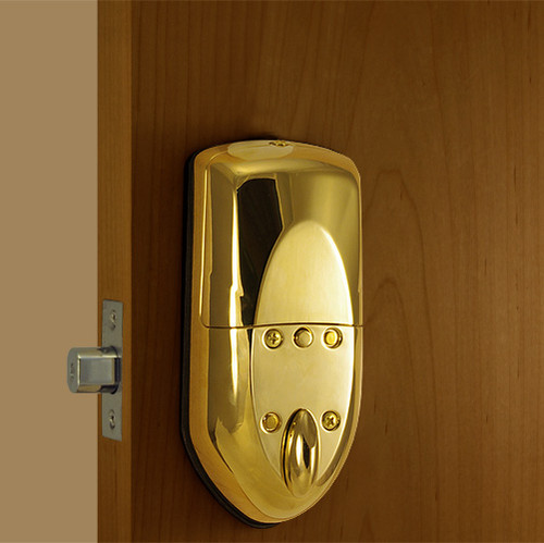 Polished Brass Back Lock Body