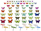 Butterfly And Dragonfly Assortment (144 Pc)
