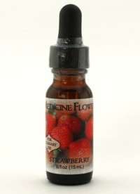 Strawberry Flavour Extract