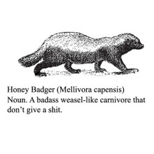 Honey Badger definition T Shirt He don't give a shit! BlackSheepShirts