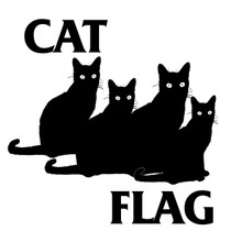 Cat Flag T Shirt funny feline punk