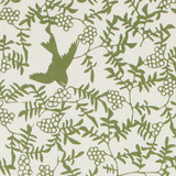 Gift Wrap - Swallow - Green on Cream