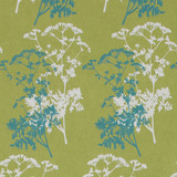 Gift Wrap - Wild Parsley - Green