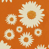 New! Gift Wrap - Daisies - Orange