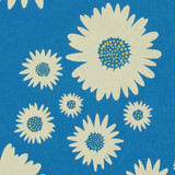 New! Gift Wrap - Daisies - Blue