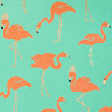 NEW! Gift Wrap - Flamingo - Metallic Gold/Orange/Mint Green