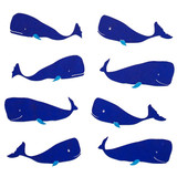 NEW! Gift Wrap - Whale - White/Navy