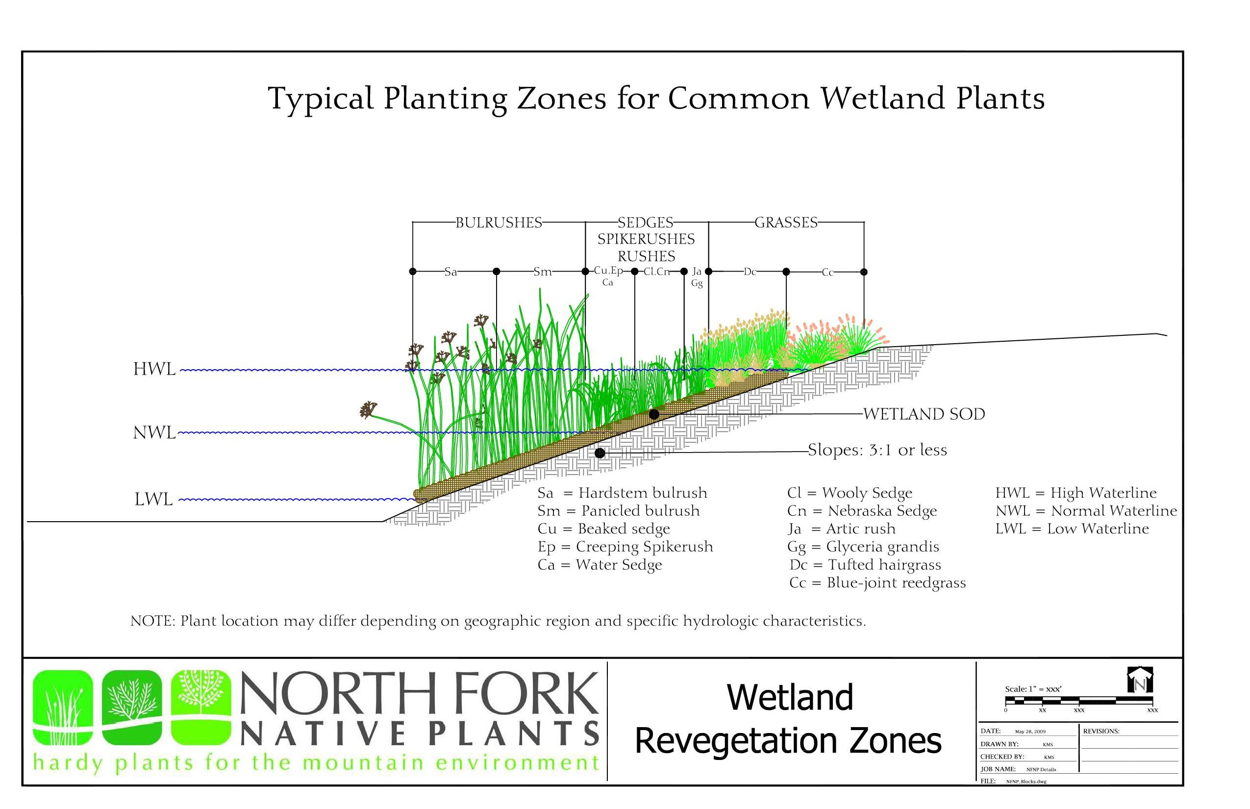 nfnp-typical-wetlandreveg-zones.jpg