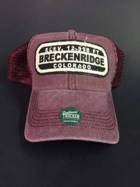 BRECK ELEV DTA CAP