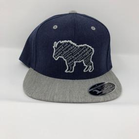 ROLLINS CAP