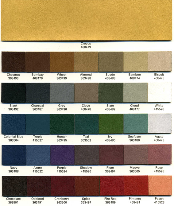omnicolors.jpg