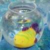 carnival-game-fish-bowltn.jpg