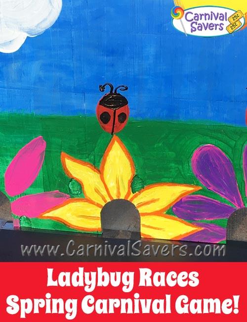 ladybug-races-diy-spring-carnival-game.jpg