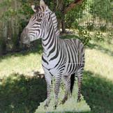 Zebra Cardboard Stand Up