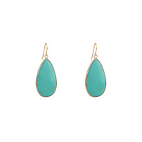 Howlite Turquoise Long Drop Earrings