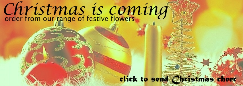 christmas-flowers-leamington-ontario.jpeg