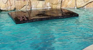 Savior Cover Pool Floating Custom LG 32 x 24 x 4