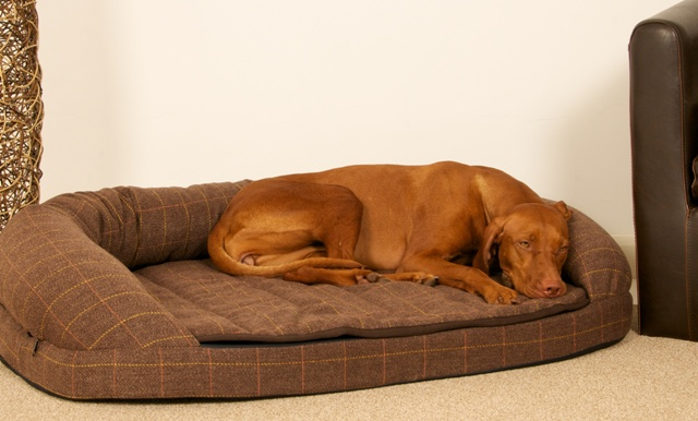 brown-tweed-dog-bed-.jpg