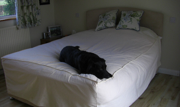 pet-sheet-bed-cover.jpg