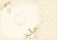 Pion Design - The Songbirds Secret - 12 x 12 Perching Birds