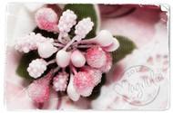 Magnolia Stamps VINTAGE BERRIES ROSERY