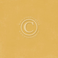 Pion Design - Palette - Golden Ocra I (PD6149F)