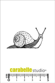 Carabelle Studio Cling Stamp Small - Un escargot
