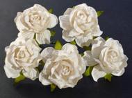 40 mm Large White Wild Roses