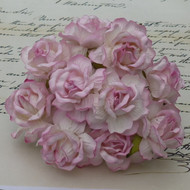 40 mm Large 2-Tone Baby Pink Wild Roses