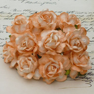 40 mm Large 2-Tone Peach Wild Roses