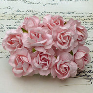 40 mm Large Pale Pink Wild Roses