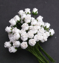 Hip Rosebuds White