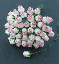 Hip Rosebuds 2-Tone Pink