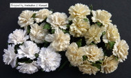 Wild Orchid Crafts Carnation - Mixed White/Cream (20 pc)