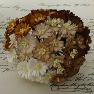 Wild Orchid Crafts Cosmo Daisy Mixed Brown/White