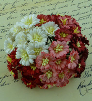 Wild Orchid Crafts Cosmo Daisy Mixed Red/Whtie