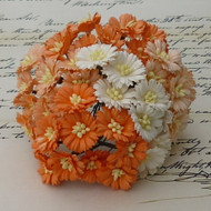 Wild Orchid Crafts Cosmos Daisy Mixed White/Orange