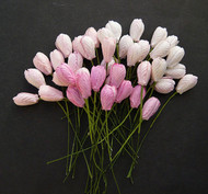 Wild Orchid Craft Mixed Pink Tone Tulips