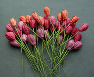 Wild Orchid Crafts Mixed Red Tone Tulips