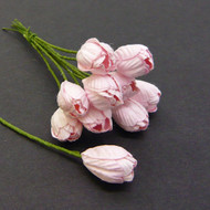 Wild Orchid Crafts Baby Pink Tulip
