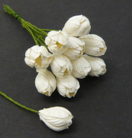 Wild Orchid Crafts White Tulips