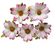 Wild Orchid Crafts 2-tone Pink Chrysanthemums