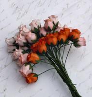 Hip Rosebuds - Mixed Peach/Orange Tone