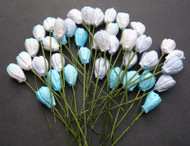 Tulip - Mixed Blue Tone
