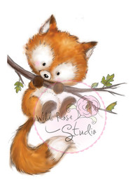 Wild Rose Studio - Fox on Branch