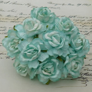 Wild Orchid Crafts 40 mm Aqua Wild Roses