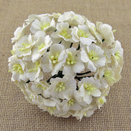 Wild Orchid Crafts Apple Blossoms White