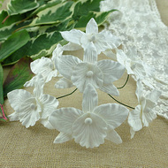 Wild Orchid Crafts Orchids Large White