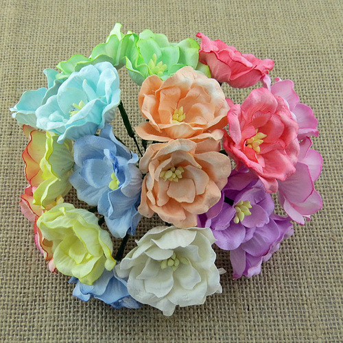 Wild Orchid Crafts Mixed Pastel Tone Magnolias
