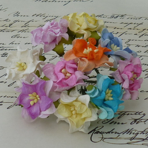 Wild Orchid Crafts Small Mixed Color Gardenia